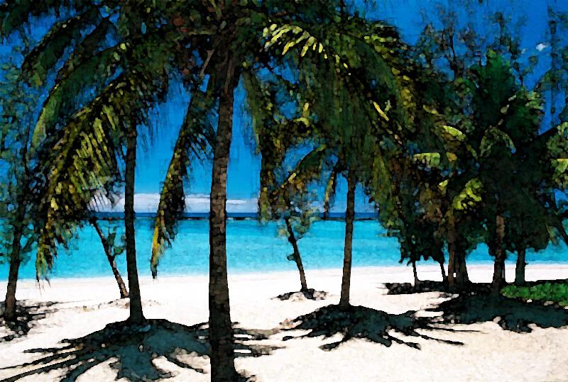 Trousse spéciale destination tropicale